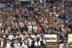 Stanley cup Rally #3-355-1